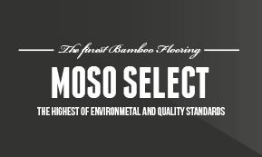 MosoSelect